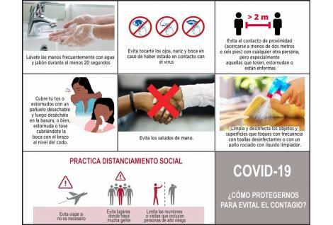COVID-19, pandemia mundial